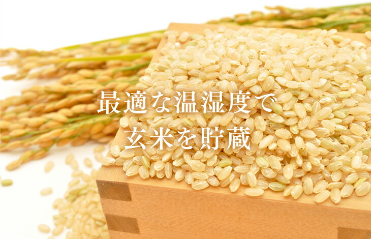 最適な温湿度で玄米を貯蔵