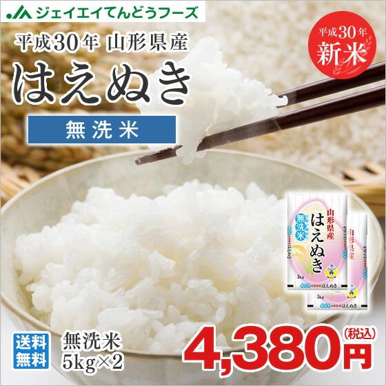 はえぬき無洗米5kg×2