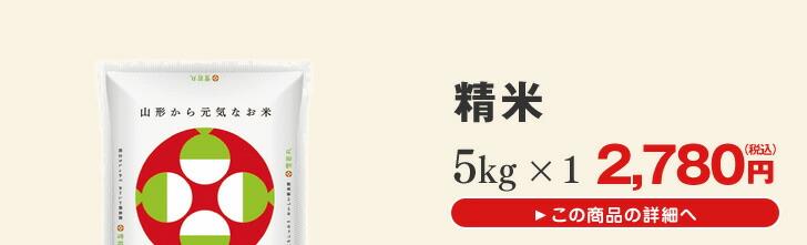 山形県産雪若丸5kg×1