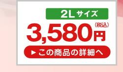 山形県産ハウスさくらんぼ品種おまかせダイヤパック2L