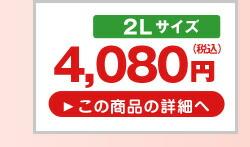 山形県産ハウスさくらんぼ佐藤錦 フードパック2L