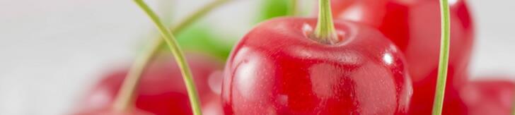 山形生まれの代表品種甘みと酸味のバランスが絶妙で根強い人気です
