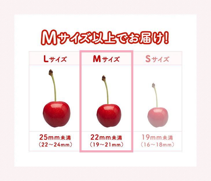 さくらんぼのサイズの説明