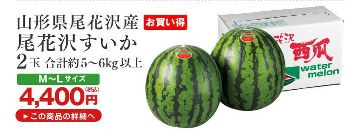 山形県尾花沢産 尾花沢すいか 5〜6kg以上  2玉
