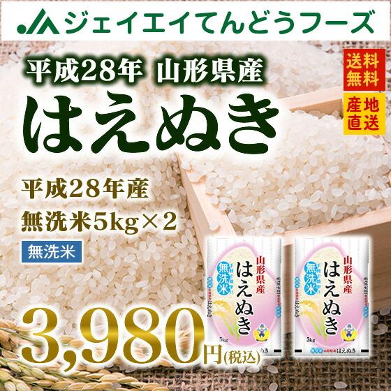 山形県産はえぬき無洗米5kg×2