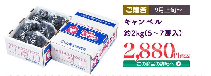 キャンベル 約2kg(5〜7房入)