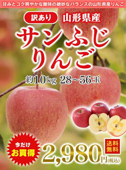 訳あり山形県産サンふじりんご10kg