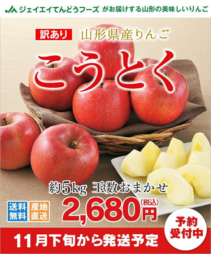 訳あり 山形県産りんご こうとく約5kg