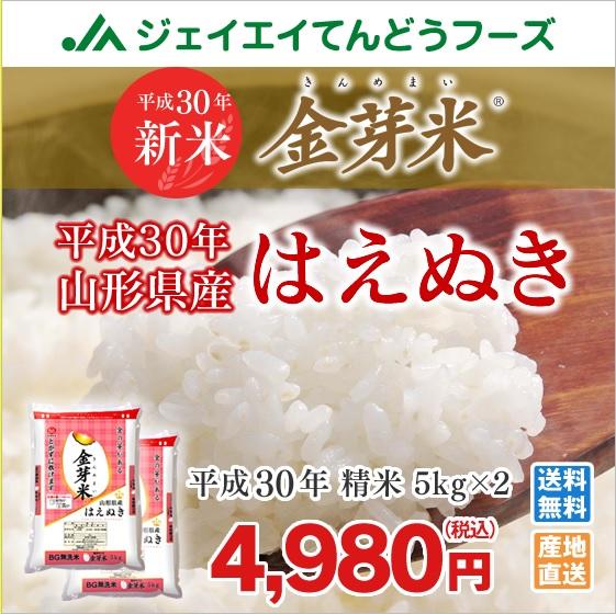 金芽米山形県産はえぬき無洗米5kg×2
