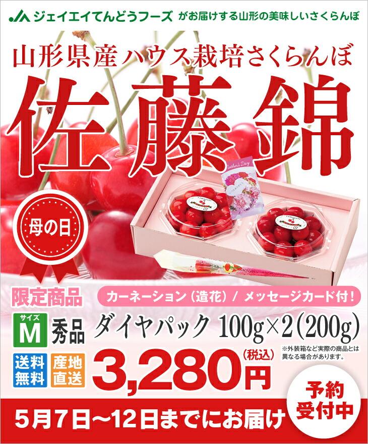 山形県産ハウス栽培さくらんぼ佐藤錦 ダイヤパック100g×2(200g)