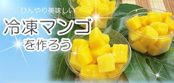 冷凍マンゴを作ろう