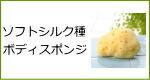 天然海綿スポンジ・ソフトシルク種ボディスポンジ
