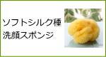 天然海綿スポンジ・ソフトシルク種洗顔スポンジ