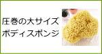 天然海綿スポンジ・圧巻の大サイズボディスポンジ