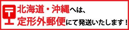 沖縄・北海道へは定形外郵便