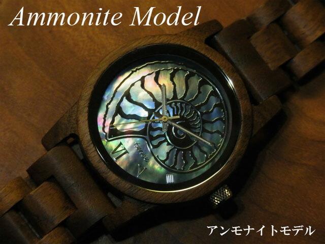 アンモナイトモデル