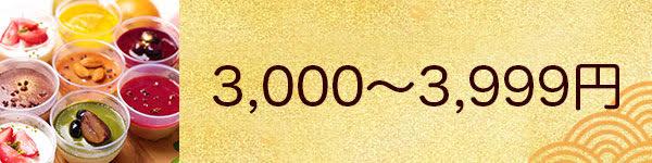 3,000円以上
