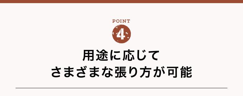 bct4_10.jpg
