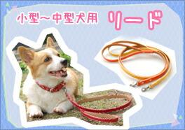 革製の犬リードの入口