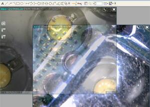 dinocap-01.jpg