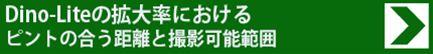 dino_ks_b.jpg