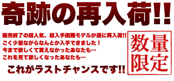 JapanModelシリーズ