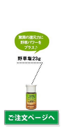 野草塩23g