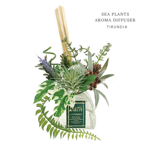 PLANTS MARKET アロマ フレグランス