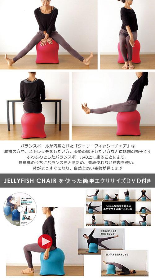 話題の椅子 体幹トレーニング