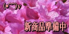 ◆天然石 ビーズ◆