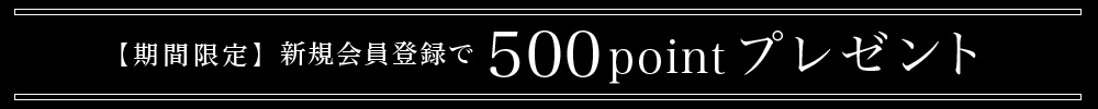 新規会員登録で500ptプレゼント