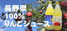 完熟サンふじをそのままギュッと絞ったりんご100%ジュースと他では手に入らない【ぐんま名月】果汁100%ストレートりんごジュース