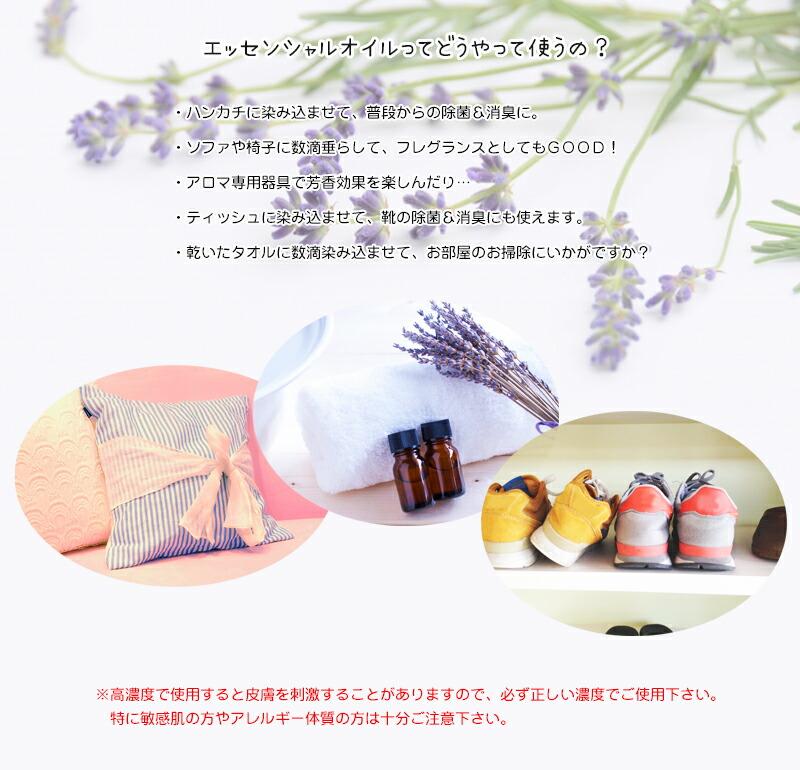 北海道 富良野産 ラベンダー-5