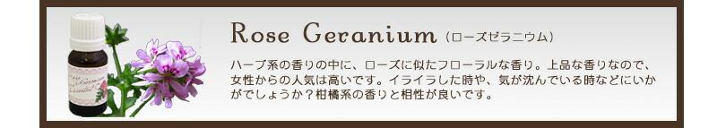 ローズゼラニウム