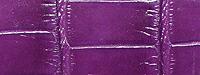 アリゲータ(ツヤアリ)竹斑
