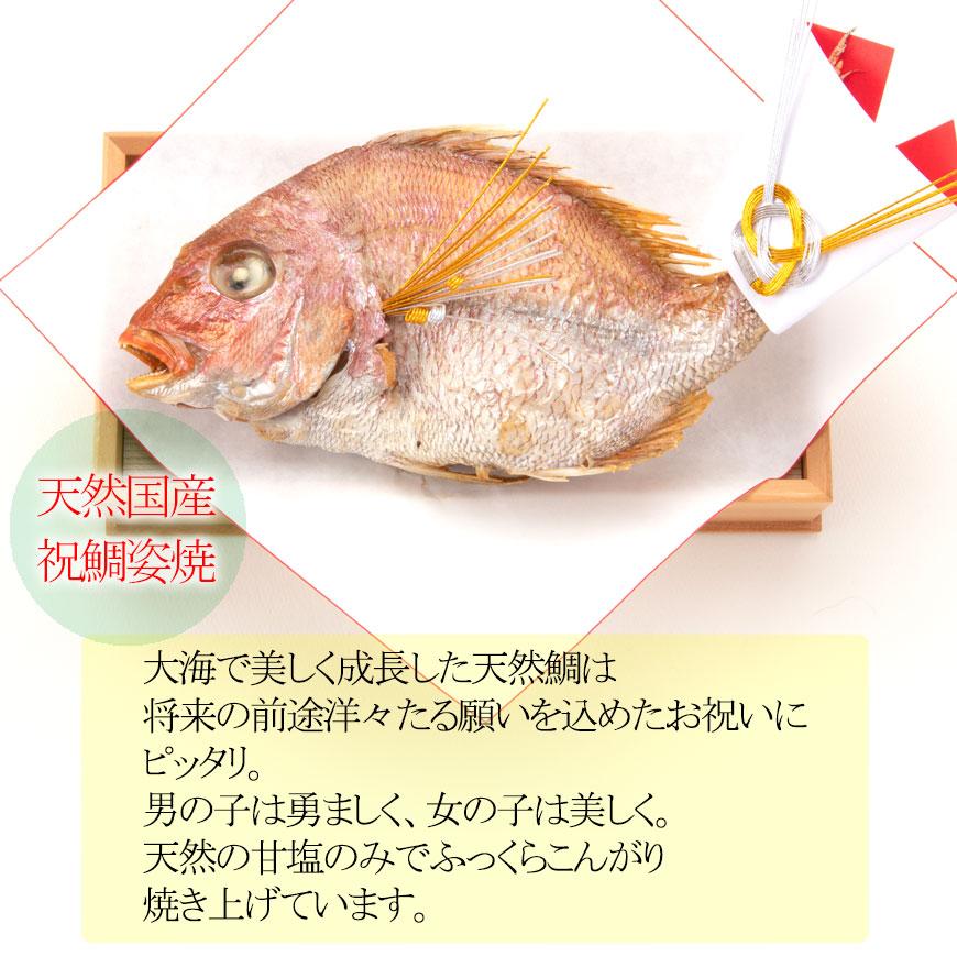 鯛のみイメージ