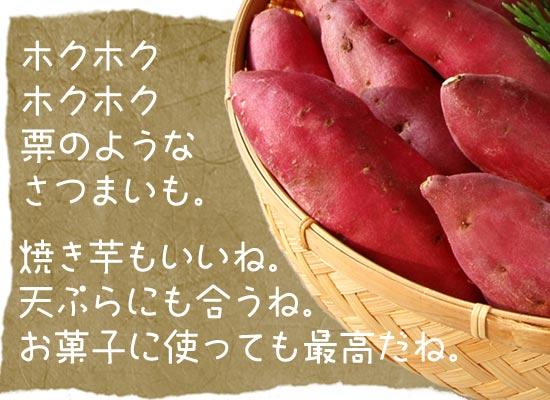 焼き芋・天ぷら・お菓子作りに鳴門金時