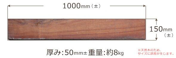 サイズ01