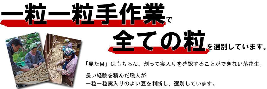 千葉県特産落花生、戸村商店
