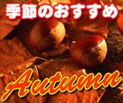 季節のおすすめ品(秋)