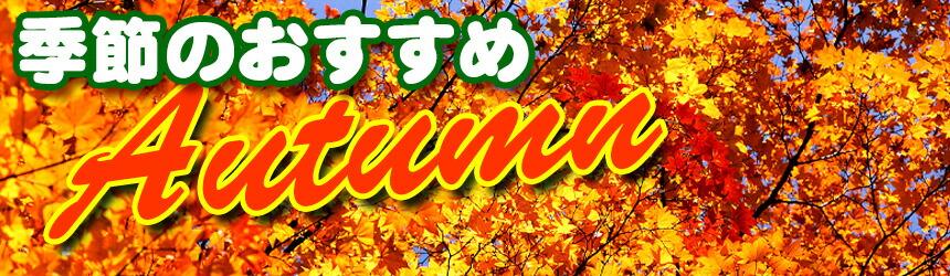 季節のおすすめ(秋)