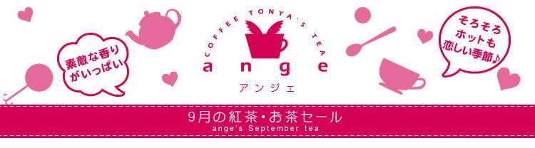 今月のおすすめ茶
