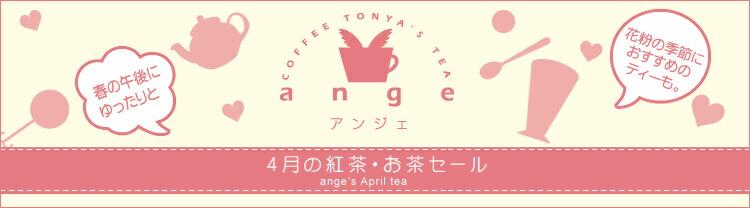 2018年3月のおすすめ茶