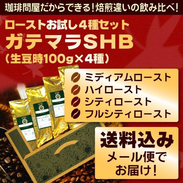 ◎ガテマラSHB ローストお試し4種メール便(珈琲解説付)