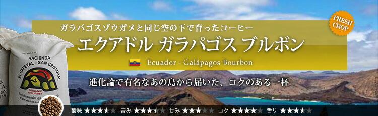 エクアドル ガラパゴス ブルボン - Ecuador Galápagos Bourbon