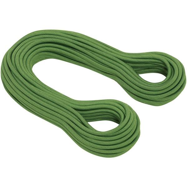 マムート MAMMUT ロープ 10.0 Galaxy Dry Dry Standard パッペルエメラルド 2010-02660-11137