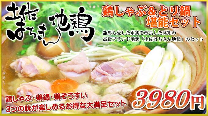 土佐はちきん地鶏の鶏しゃぶ&鶏鍋堪能セット