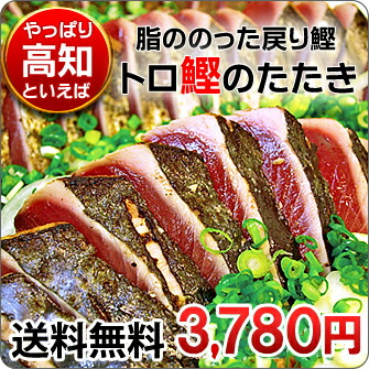 やっぱり高知といえばカツオでしょ♪高知県産トロ鰹のたたき