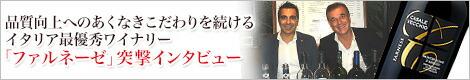 ファルネーゼ突撃インタビュー