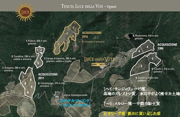ルーチェ地図